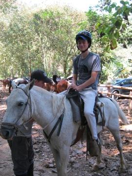 rhall-horses-1